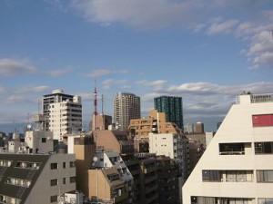 グランパレス南麻布仙台坂 眺望