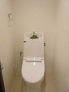 自由が丘スカイハイツ トイレ
