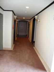 ドムス高輪 廊下