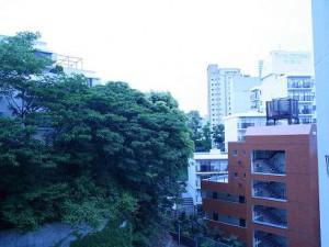 新池田山マンション 約3.5帖のダイニングのバルコニーからの景色