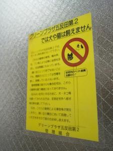 グリーンプラザ五反田第2 エレベーター前のポスター