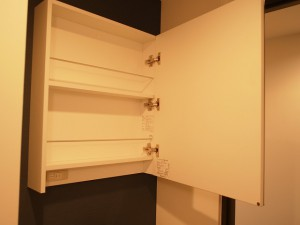 グリーンプラザ五反田第2 洗面台鏡の収納
