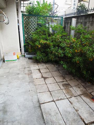 グリーンキャピタル神楽坂 専用庭