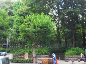 新宿パークサイド永谷  周辺