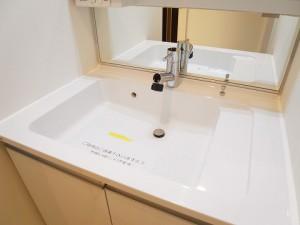 ファミール西新宿 洗面台
