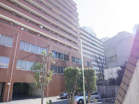 シェモワ新宿 眺望