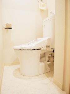 ライオンズマンション三軒茶屋  トイレ
