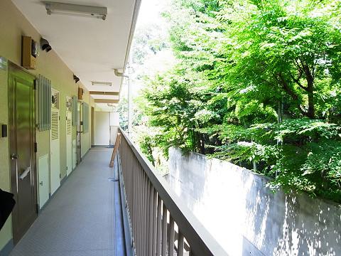 クレール御殿山 外廊下