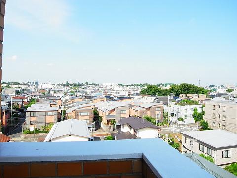 上野毛サンハイツ  眺望