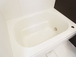 秀和上野毛レジデンス  バスルーム