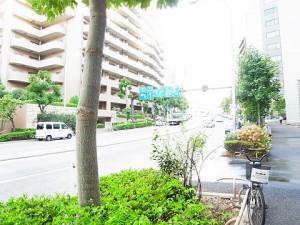 マンション新宿御苑  周辺