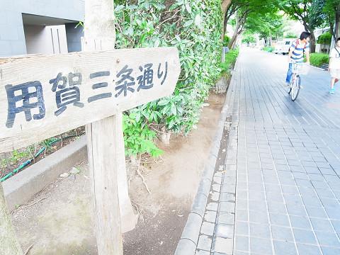 砧公園ヒミコマンション