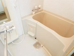 菱和パレス銀座八丁目  バスルーム