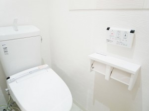フジタ野沢マンション  トイレ