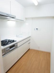 フジタ野沢マンション  キッチン
