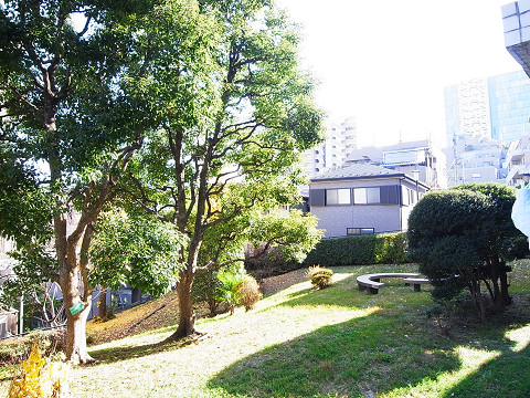 グリーンヒル新宿  眺望