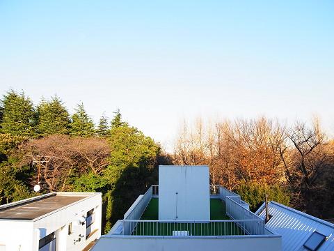 ダイヤパレス世田谷公園 眺望