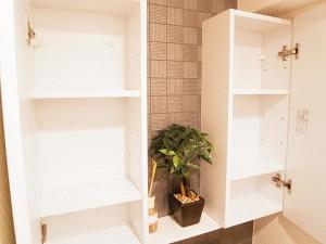 三田ハイデンス  トイレ