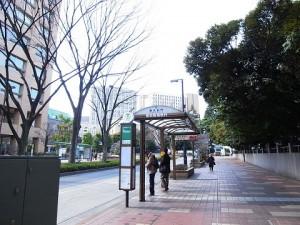 グランシティ早稲田  周辺