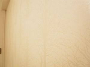 ホワイトレジデンス 洋室2