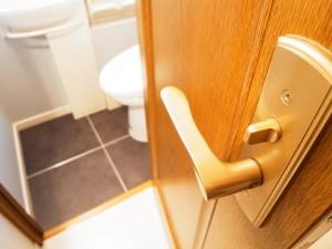 グリーンパーク日本橋Duex トイレ