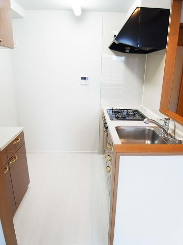 グリーンパーク日本橋Duex キッチン