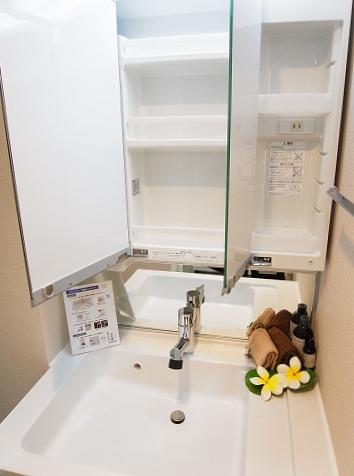 ライオンズマンション三宿 洗面台
