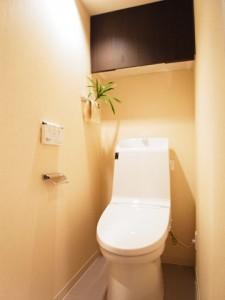 三軒茶屋スカイハイツ  トイレ