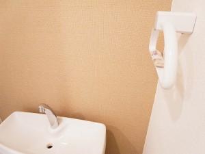 マンション新宿御苑  トイレ