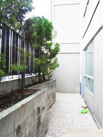 目黒第2コーポラス 専用庭