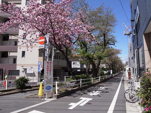 エクセル柿の木坂
