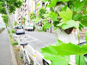池田山スカイマンション  周辺