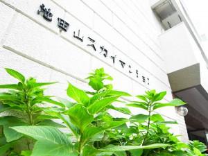 池田山スカイマンション  エンブレム