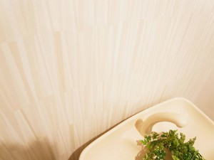 二子玉川ロイヤルマンション  トイレ