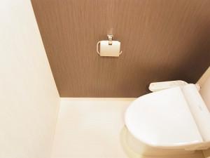 ハイネス池尻 トイレ