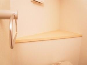 ライオンズマンション茅場町 トイレ