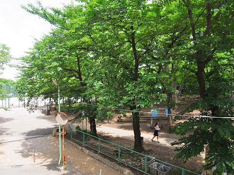 千歳船橋サマリヤマンション 東眺望