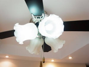 シャルムコート新宿ステーションパレス 洋室照明