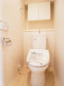 ライオンズマンション玉堤 トイレ