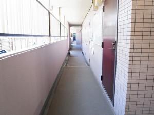 グリーンコート梅ヶ丘 外廊下