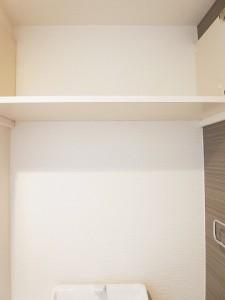 駒沢コーポラス     トイレ収納