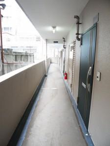 越前掘永谷マンション 玄関