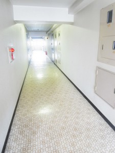 モンテベルデ築地 内廊下