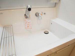 メゾン瀬田 洗面台