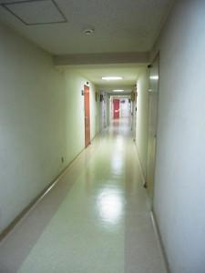 藤和護国寺コープ 廊下
