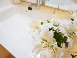 小石川ハウス 洗面台