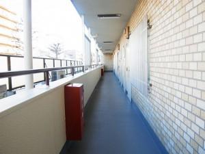 カーサ中野本町 共有廊下