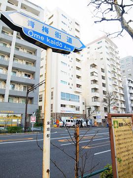 カーサ中野本町 周辺