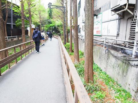 ライオンズプラザ新宿 周辺