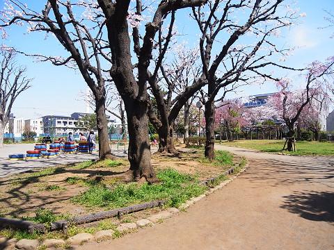千歳台ヒミコハビタット 周辺